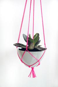 Pink hanging