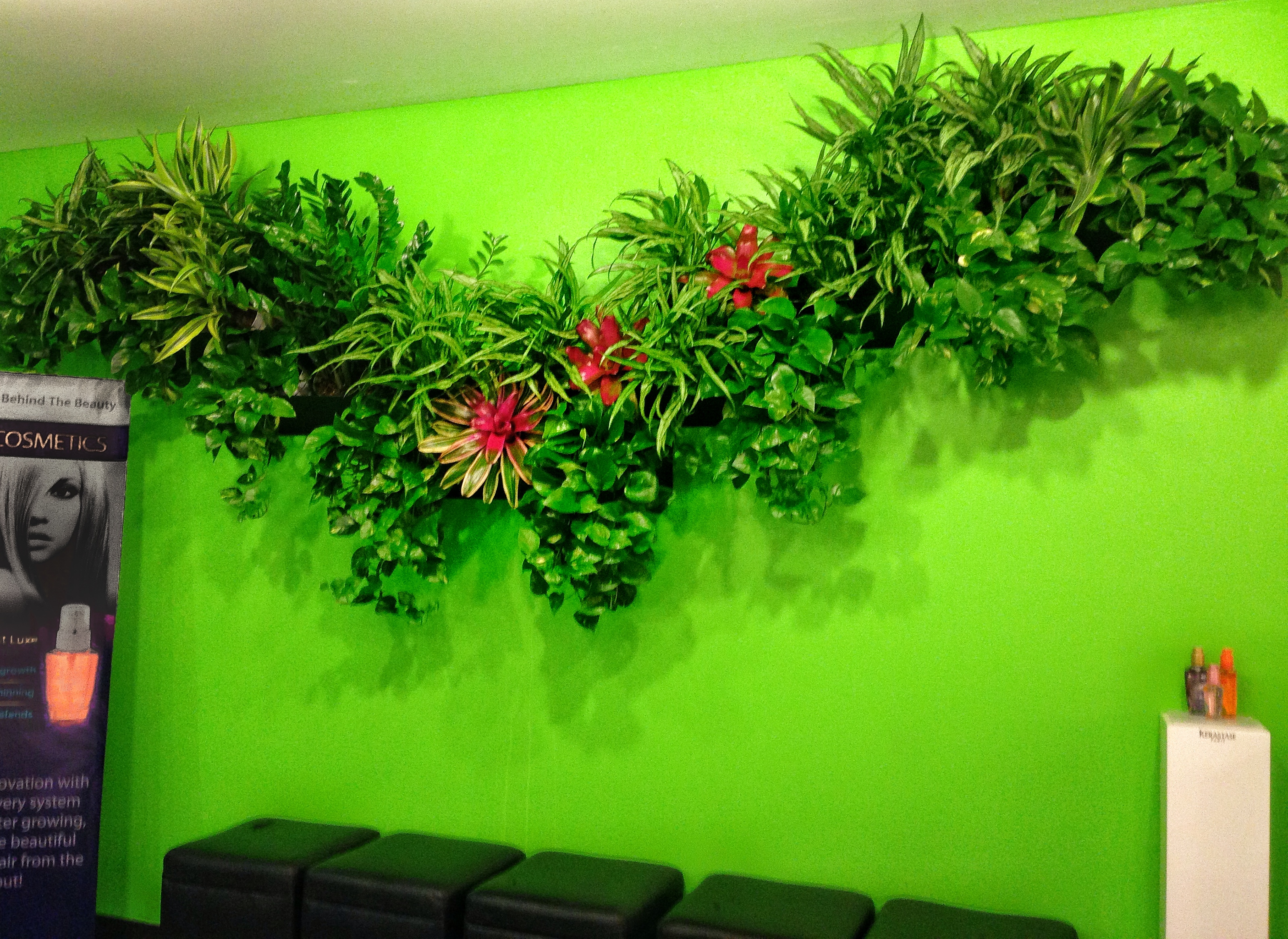 If You Are Tight On Living Wall Design